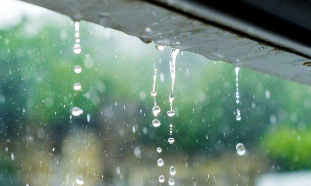 Buena lluvia en toda la región