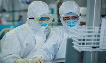 jueves: Informe provincial de contagios de covid